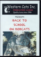 Back to School on Bobcats