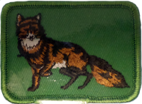 Sew On Patch Fox