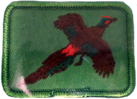 Sew On Patch Pheasant