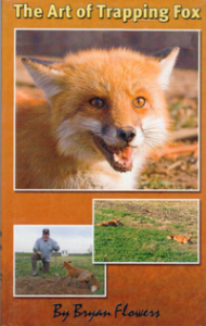 The Art of Trapping Fox